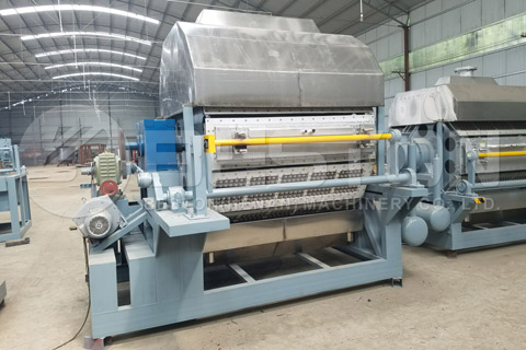Beston Egg Tray Equipment for Sale