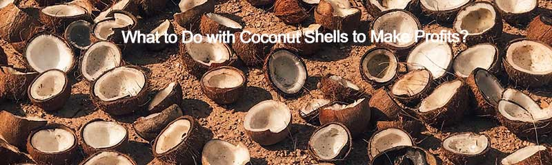 What to Do with Coconut Shells