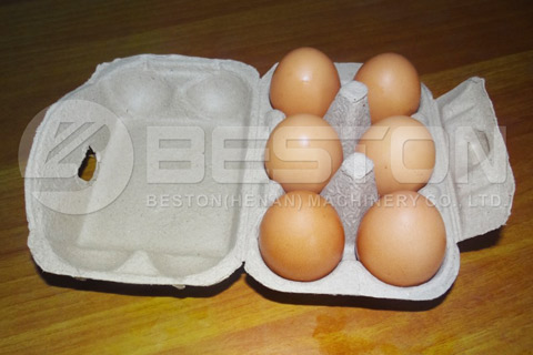 6 Holes Egg Trays