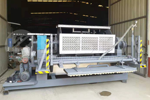 Beston Egg Tray Machine for Sale