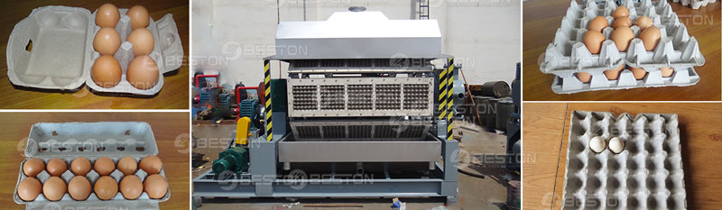 Paper Pulp Molding Machine for Sale - Beston Group