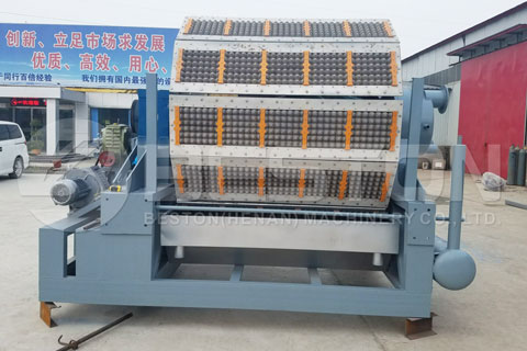 Fully Automatic Egg Tray Making Machine Shipped to Egypt
