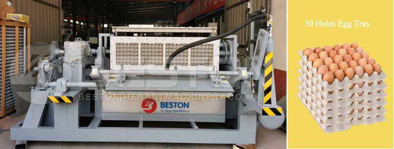 Egg Tray Making Machine for Sale in Parkista Beston Machinery
