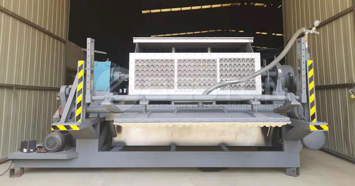 Beston Apple Tray Making Machine for Sale