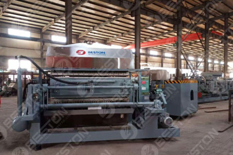 Beston Egg Tray Making Machine Delivered to India