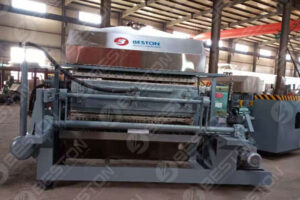 Pulp Egg Tray Making Machine Shipped to India